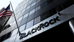 BlackRock stewardship report shows record activity