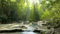 Sun shining onto a babbling brook in the forest, Eravan National Park, Thailand