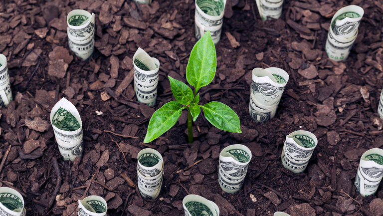 Investment consultants form sustainability group