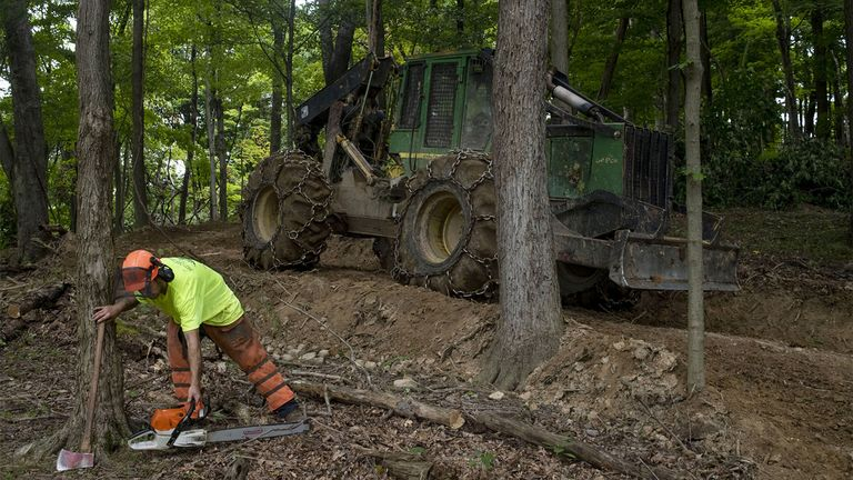 Timber, farmland assets continue to slide