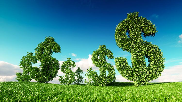 Eco friendly business, green profit, growing money and sustainable economy concept. 3d rendering of green dollar icon on fresh spring meadow with blue sky in background