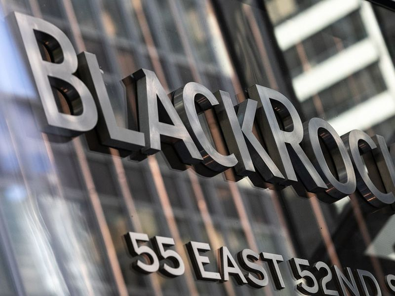 BlackRock, Vanguard aren't pushing companies on climate change – report - Pensions & Investments