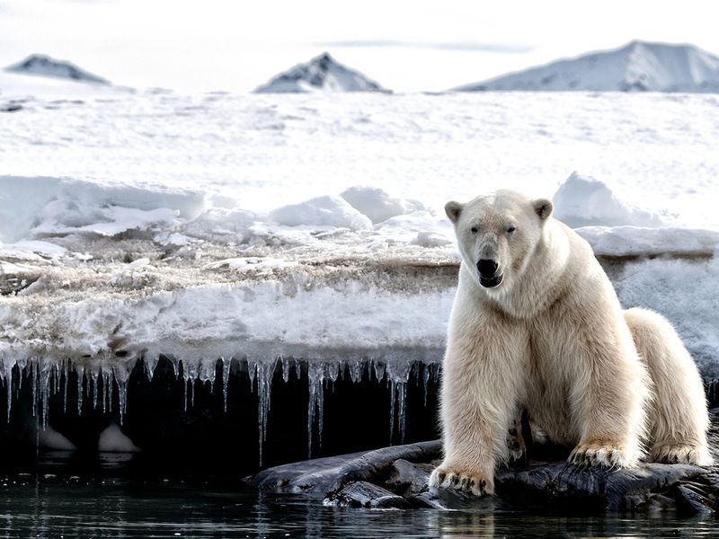 Fed Thrift board should mull climate change in weighing plan options – GAO