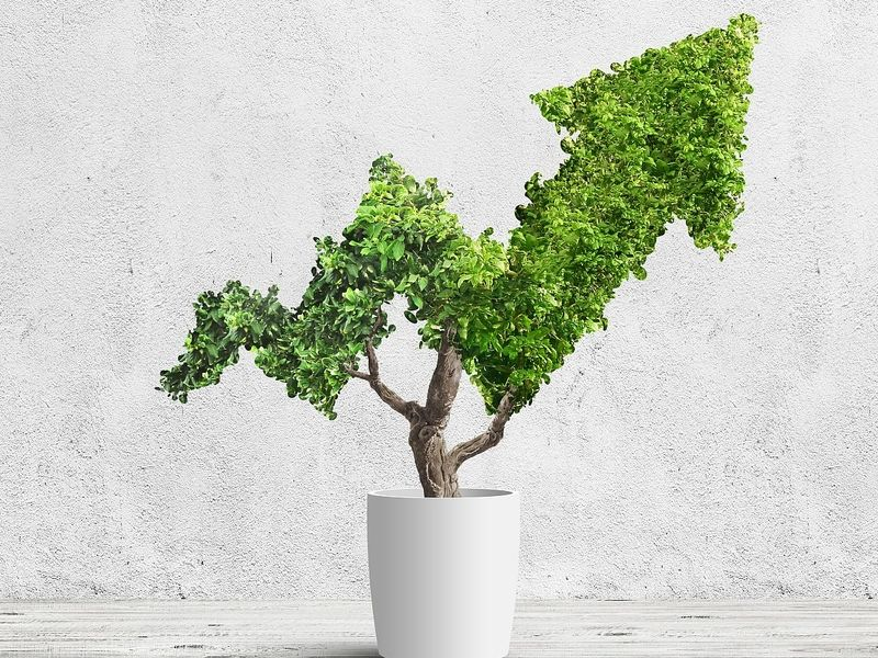 S&P Global annual report finds record ESG disclosure