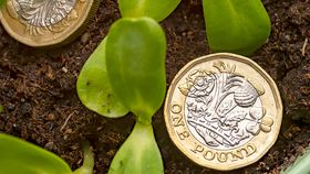 Pound coins in amongst seedlings signifying investment growth
