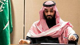 Mohammed bin Salman, Saudi Arabia's crown prince
