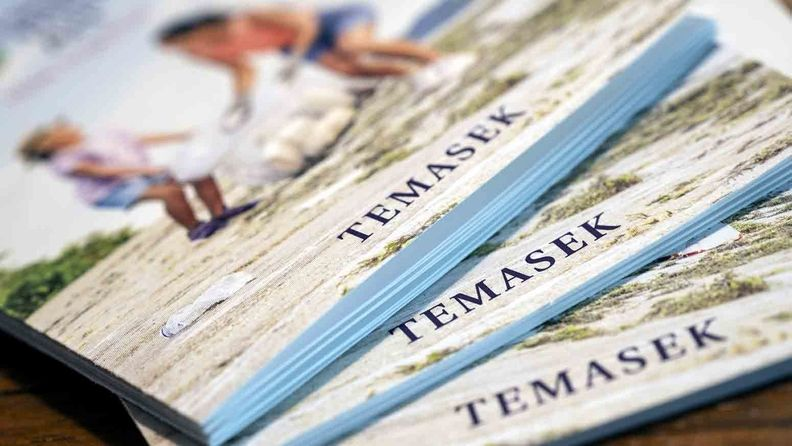 Copies of the Temasek Holdings annual report are arranged for a photograph in Singapore